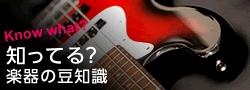 楽器の豆知識